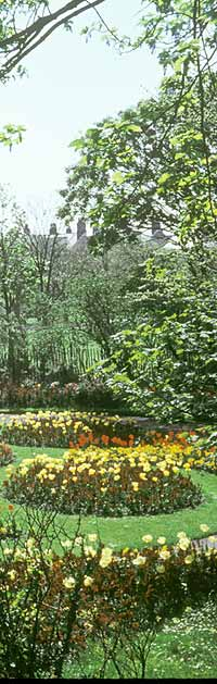 The circle gardens in spring